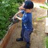 Gardening United Kingdom