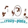 crazy-pinto