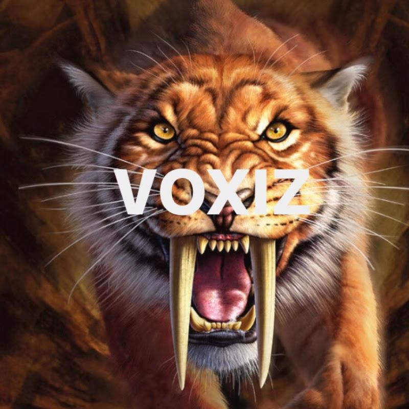 VOLTIC VIBE (voltic-vibe)