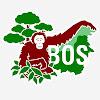 BOS Foundation