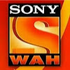 Image result for sony wah