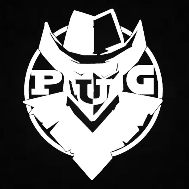 Power Up Gamer PUG (power-up-gamer-pug)