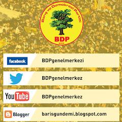 BDP Barış ve Demokrasi Partisi