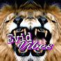 Evid Vibes