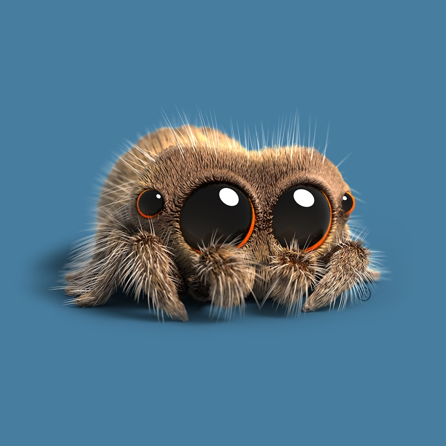 Lucas The Spider Youtube