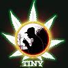 OfficialTinyTV