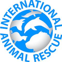 International Animal Rescue IAR