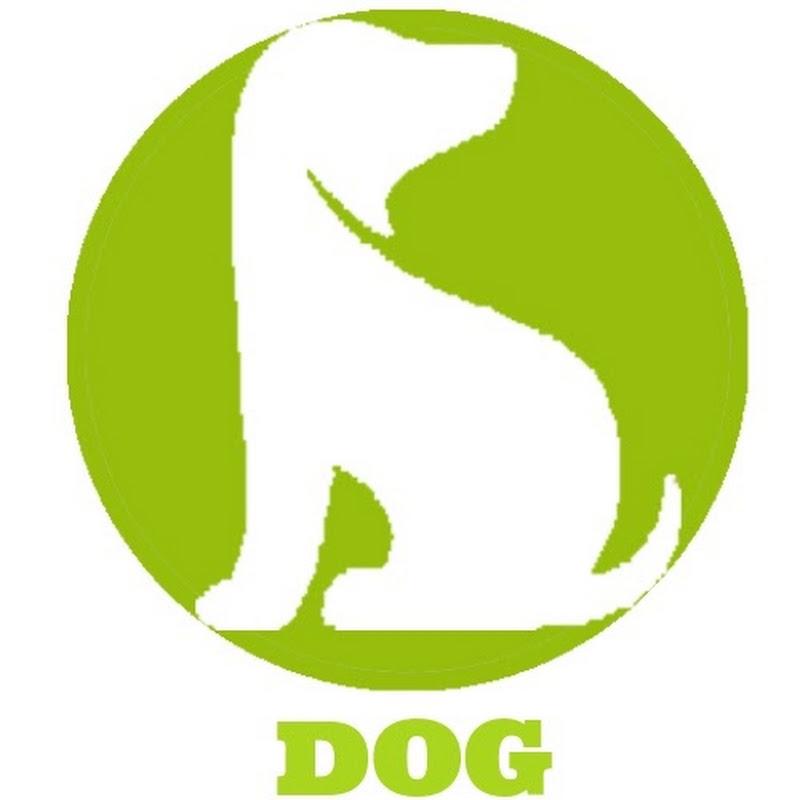 Dogpets