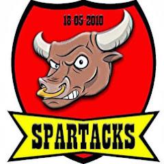 Spartacks Cyber