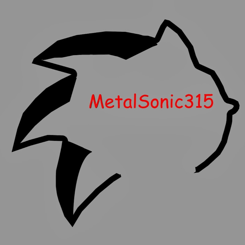 youtubeur MetalSonic315