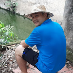 Phi Hoang Channel