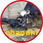 Chandni dairy farm