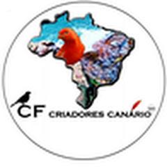 CF CRIADORES CANÁRIO BR