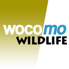 wocomoWILDLIFE