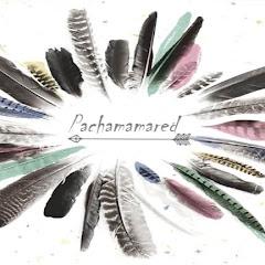 Pachamamared