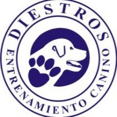 diestros2