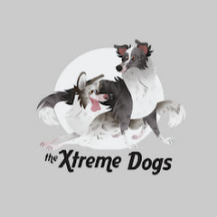The Xtreme Dogs