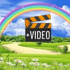 Manish K Satrangi Video