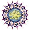 Mohammed Nidae