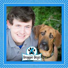 Doggie Dojo