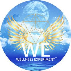 Wellness Experiment