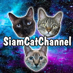 Siam & Tango Cat Channel