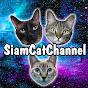 Siam & Tango Cat