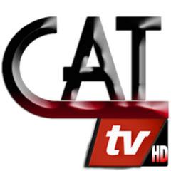 CAT WEB TV