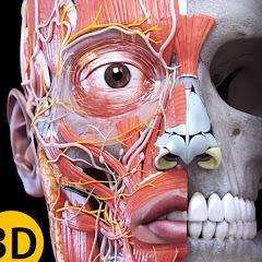 3D Atlas of Anatomy