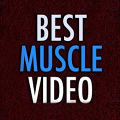 Best Muscle Video
