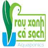 Rau Xanh Ca Sach Aquaponics