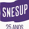 SNESup
