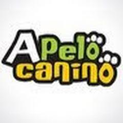 Apelo Canino