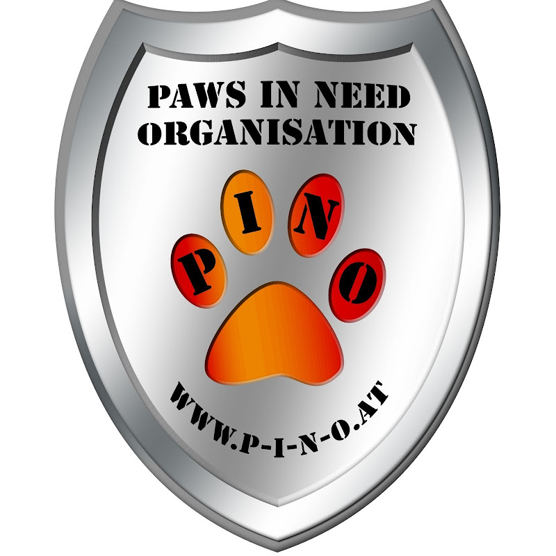 Paws In Need Organisation
