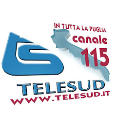 TeleSud