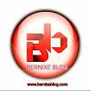 Bernixe Blog