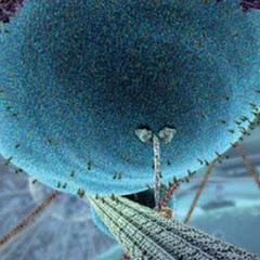 XVIVO Scientific Animation