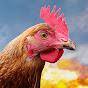 PUBG Chicken Dinners