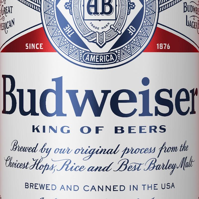 Budweiser - VamosDotPK