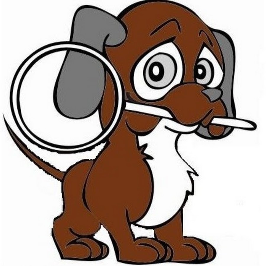 Bloodhound Home Inspection Services Youtube