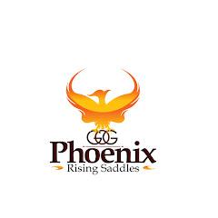Phoenix Rising Saddles--Your Gaited Horse Source (4-Beat Saddles)