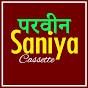 Parveen Saniya Mewati