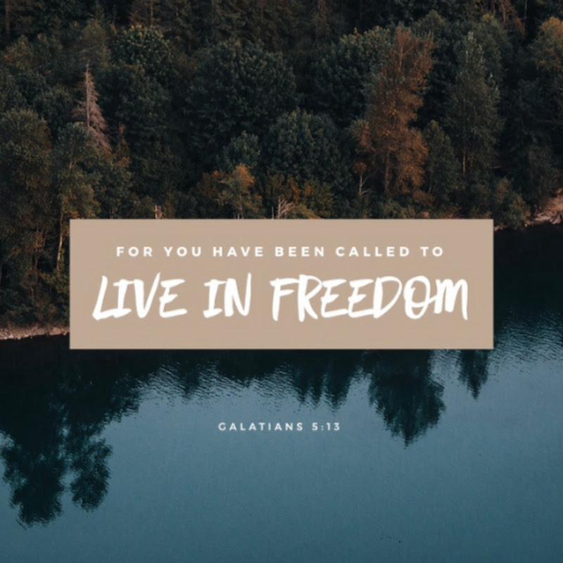 Focus on Freedoms (focus-on-freedoms)