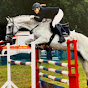 Jumping Mare