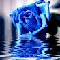 BlueRose102223