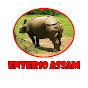 Enter10 Assam