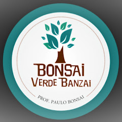 BONSAI VERDE BANZAI