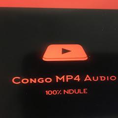 Congo Television Network
