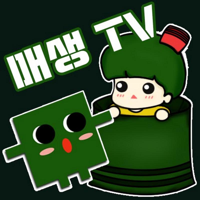 매생이TV