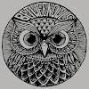 Between Owls